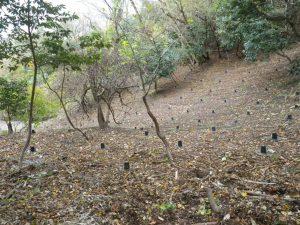 玄武洞公園山腹崩壊対策工事(その3)
